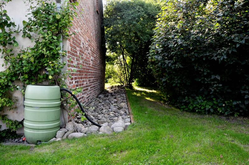 Gartenbau gartengestaltung gartenplanung beratung und pflege in potsdam rund um berlin und - Gartenbau friedrich ...